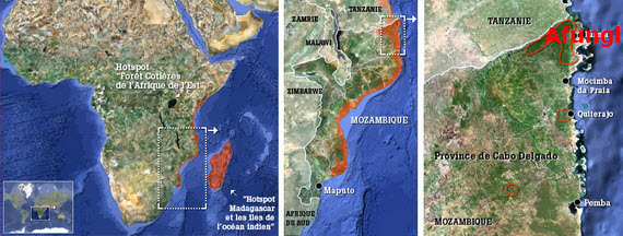 Eni_Mozambique_FLNG_map
